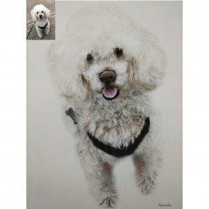 Handmade Pet Portraits