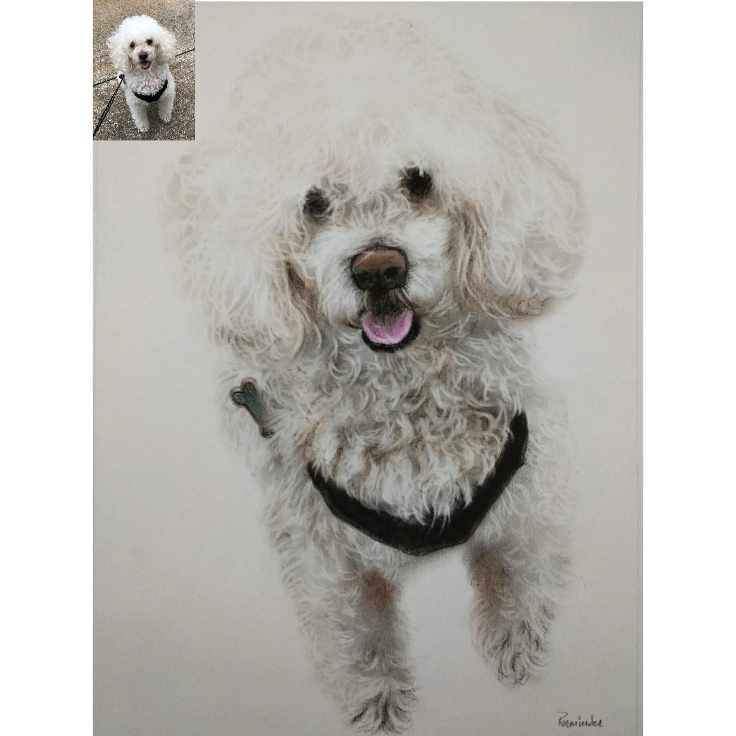 Handmade Pet Portraits