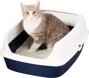 Cat in her Littering Box