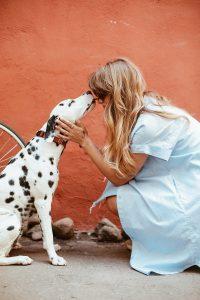 Owner-pet Relationship