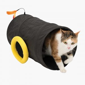 Cat Tunnel images