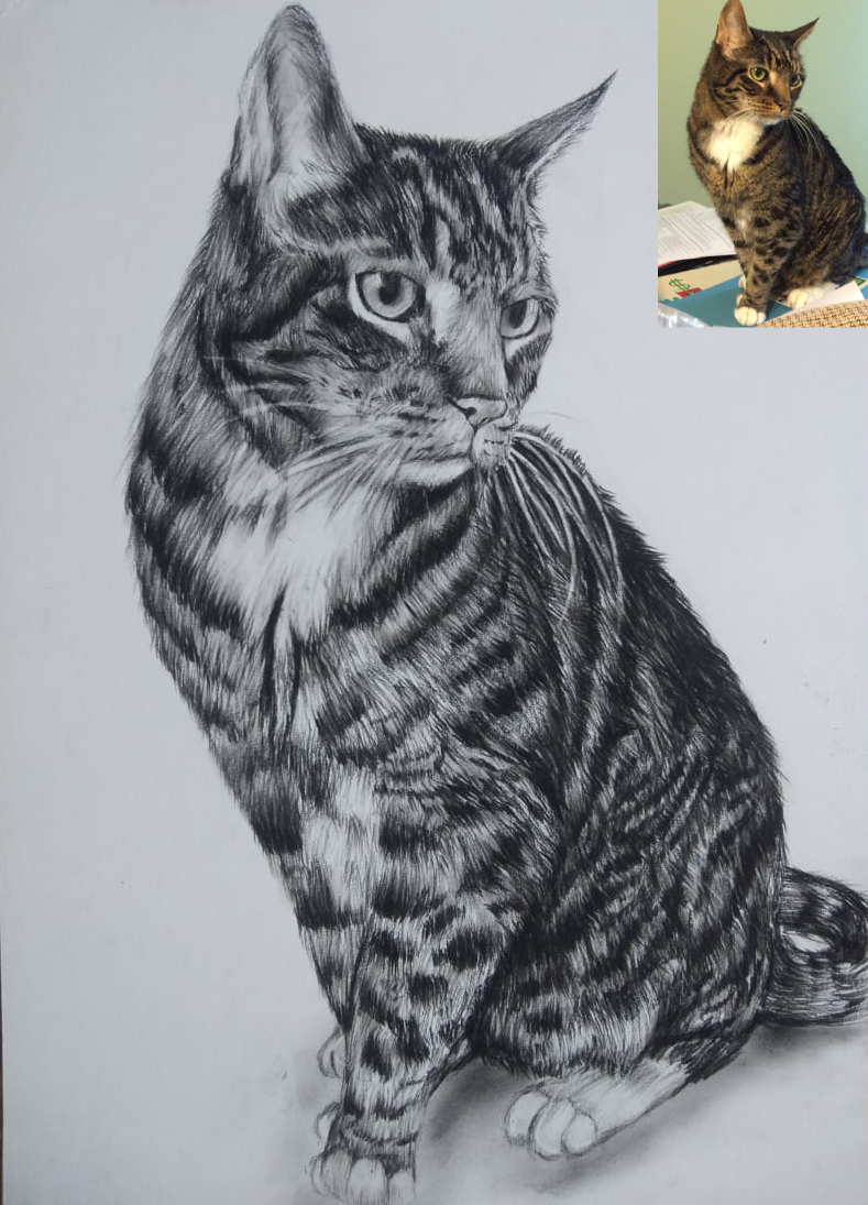 Custom Handmade Pet Portrait As Cat Birthday Gift