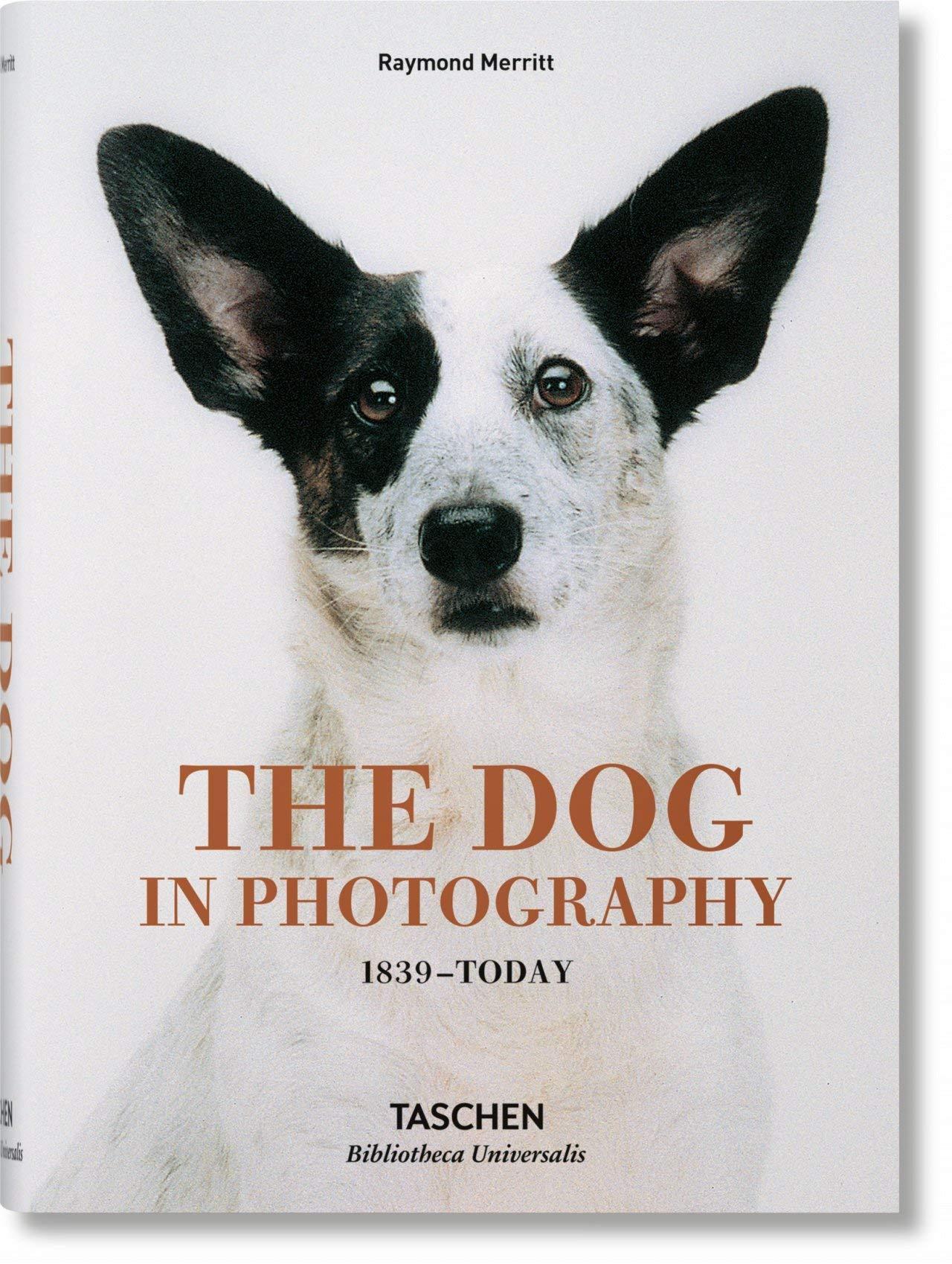 Pet Photography Book