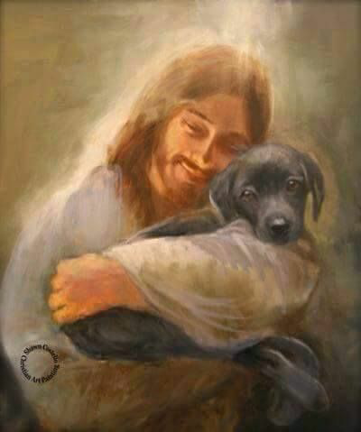 Image result for jesus and dogs