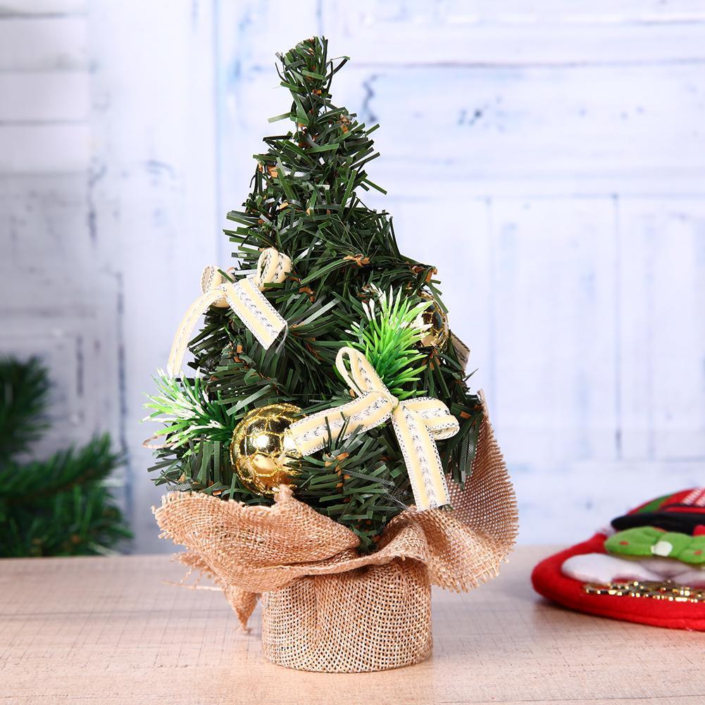 Mini Plants as christmas decoration Ideas