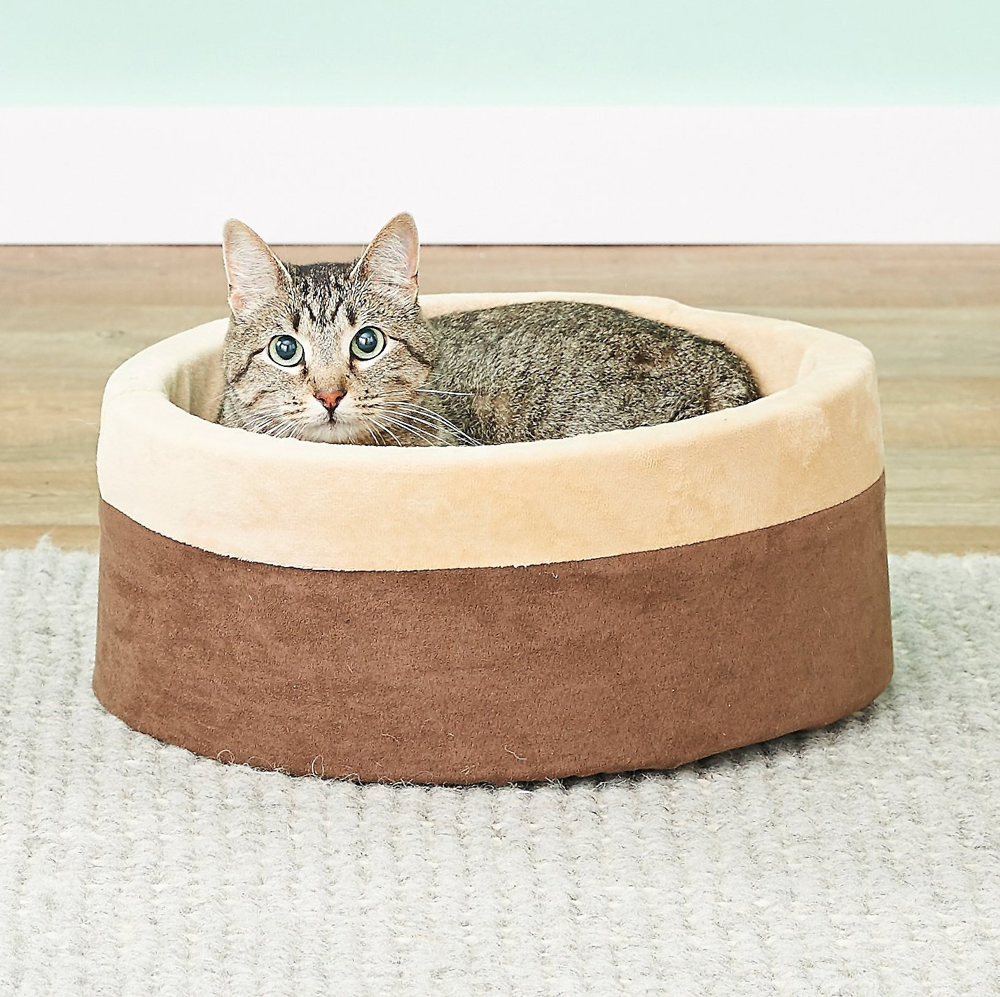 Thermo-Kitty Bed As Cat Birthday Gift