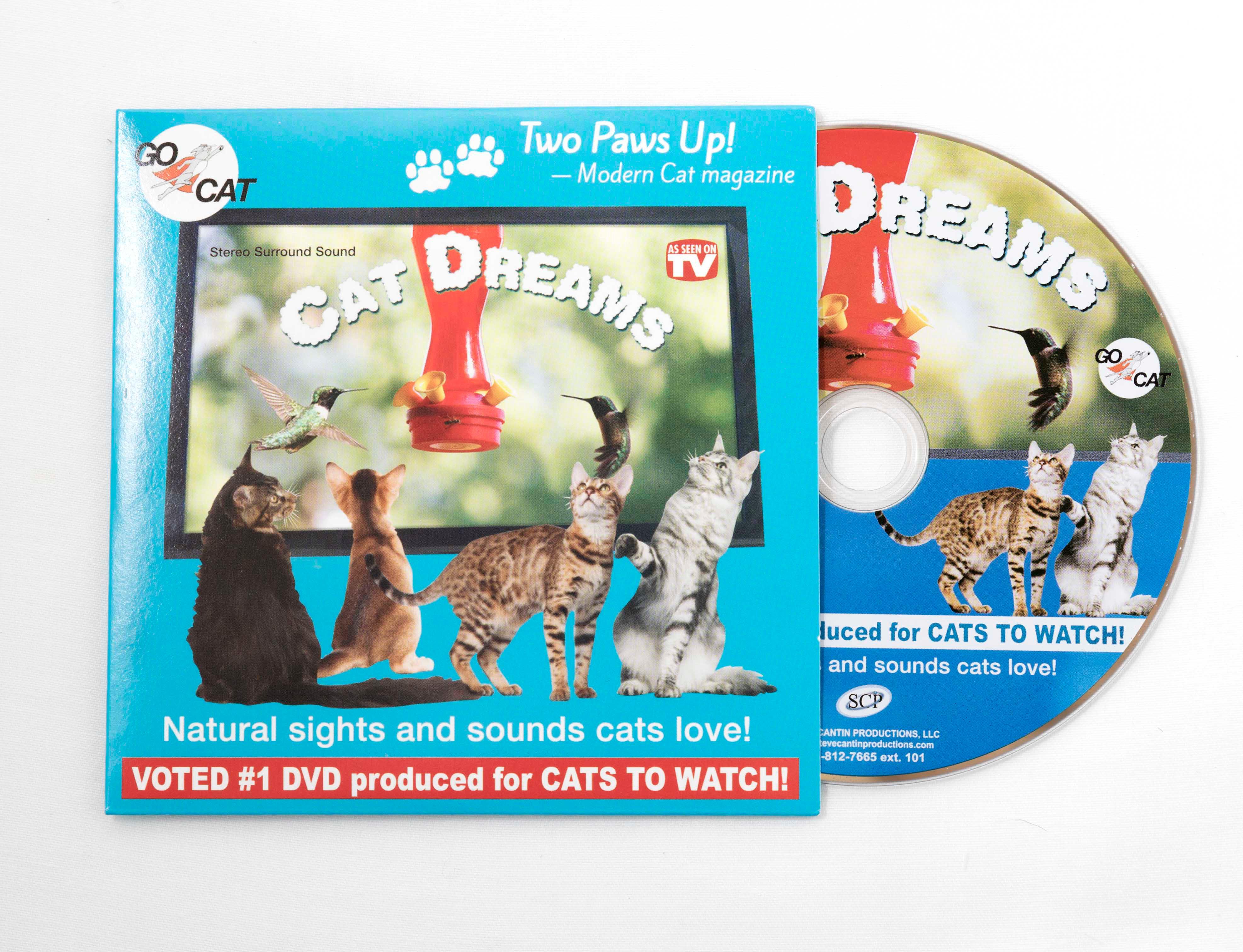 Cat Dreams DVD