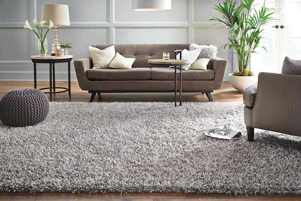 Rug in Living Room