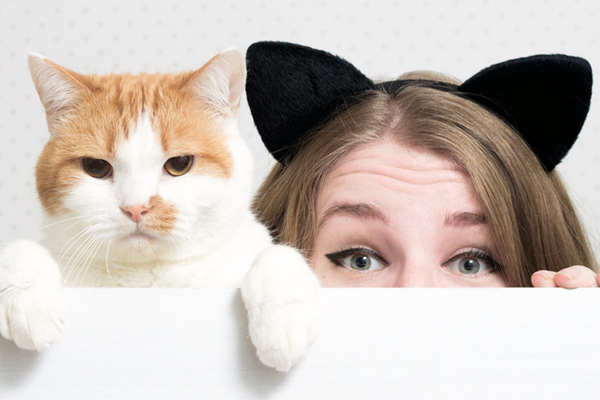 Caring the Ears (Cat Grooming)