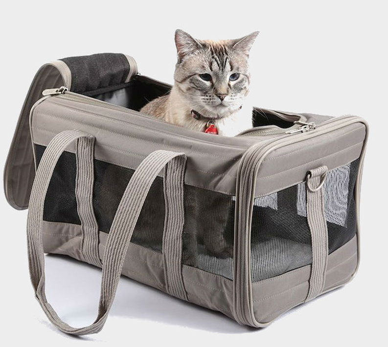 Best Cat Carriers (TRAVEL WITH CAT: TIPS AND TRICKS)