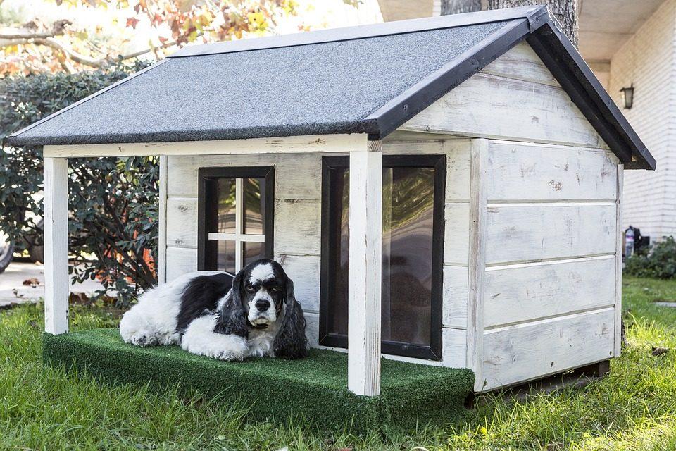 Open Air Concrete Dog House