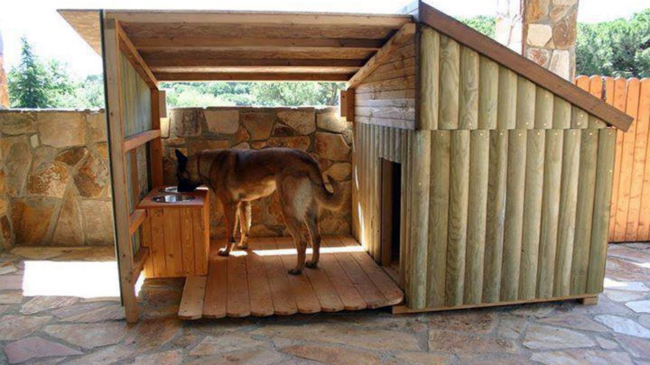 The Ultimate Pete Nelson Dog House