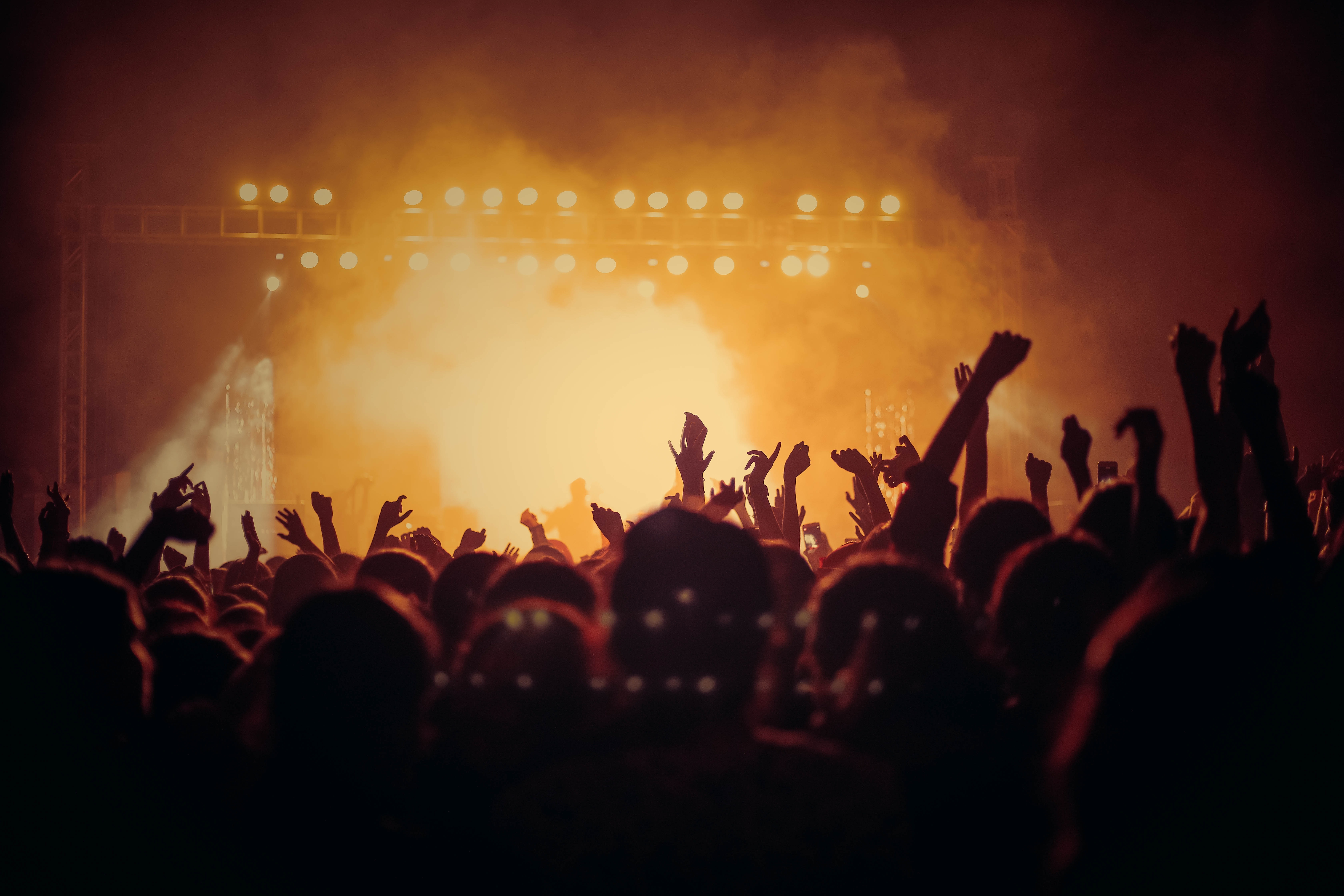 Rock Out at a Live Show